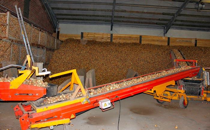 Heide-Zwiebel AG Uelzen - Lagerung von Zwiebeln